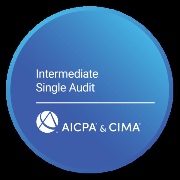 Intermediate Single Audit Certificate